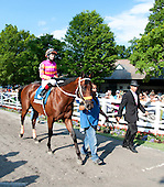 Bern Identity and trainer Kelly Breen stride through the paddock before the Sanford Stakes.