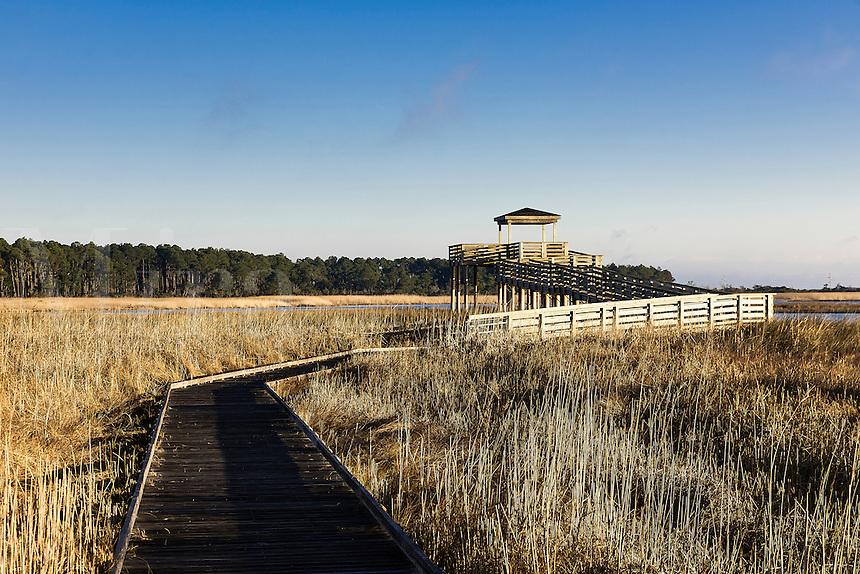 Salt marsh viewing platform atBodie Island Lighthouse, Cape Hatteras National Seashore, North Carolina, USA