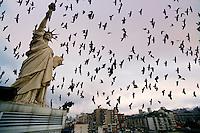 Pristina/Kosovo - feb.2008.La statua della Liberta', posta sul tetto di un albergo, ed uno stormo di corvi neri dominano il panorama del centro di Pristina.Foto Livio Senigalliesi..Pristina/Kosovo - feb.2008.Statue of Liberty, put on the roof of an hotel, and a flock of crows dominate Prishtina sky-line..Photo Livio Senigalliesi