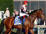 LEXINGTON, KY - October 6, 2017. #8 Dancing and jockey Manuel Franco before finishing 3rd in the 66th running of the Darley Alcibiades Grade 1 $400,000 at Keeneland Racecourse.  Lexington, Kentucky. (Photo by Candice Chavez/Eclipse Sportswire/Getty Images)