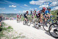 """Thomas De Gendt (BEL/Lotto Soudal)<br /> <br /> 104th Giro d'Italia 2021 (2.UWT)<br /> Stage 11 from Perugia to Montalcino (162km)<br /> """"the Strade Bianche stage""""<br /> <br /> ©kramon"""