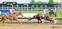 Makayla's Angel winning at Delaware Park on 6/12/13