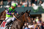 OCT 05: Rushing Fall with Javier Castellano at the First Lady Stakes at Keeneland Racecourse, Kentucky on October 05, 2019. Evers/Eclipse Sportswire/CSM