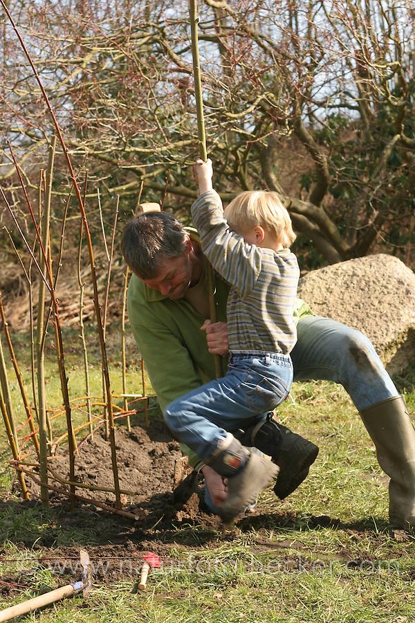 Kinder bauen einen Weidenzaun als Umrandung eines Beetes, Weidenzweige, Weidenruten vom Schneiden einer Kopfweide werden in den Boden gesteckt und wachsen an, Lebender Zaun,