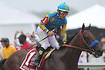 May 16, 2015: American Pharoah, Victor Espinoza up,  wins the Preakness Stakes at Pimlico Race Course in Baltimore, MD. Trainer is Bob Baffert; owner is Ahmed ZayedMay 16, 2015: American Pharoah, Victor Espinoza up,  wins the Preakness Stakes at Pimlico Race Course in Baltimore, MD. Trainer is Bob Baffert; owner is Ahmed Zayed. Joan Fairman Kanes/ESW/CSM