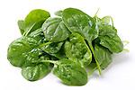 Sakata Spinach