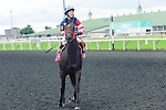 Callisto(8) with Jockey Taylor Rice aboard after the Natalma Stakes at Woodbine Race Course in Toronto, Canada on September 13, 2014 with Jockey Patrick Husbands aboard.