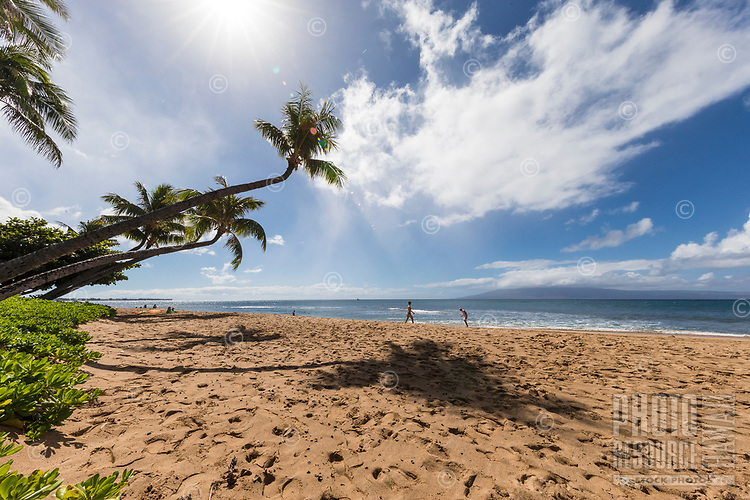 View from under a palm tree: people enjoy s sunny day at Ka'anapali Beach, Maui.