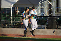 Idaho Falls Chukars catcher Wyatt Mascarella (25) and starting pitcher Anthony Veneziano (49) walk toward the dugout before a Pioneer League game against the Missoula Osprey at Melaleuca Field on August 20, 2019 in Idaho Falls, Idaho. Idaho Falls defeated Missoula 6-3. (Zachary Lucy/Four Seam Images)