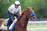 May 15, 2015: Preakness contender Dortmund gallops on the track the day before the big race. Friday morning Preakness preparations at Pimlico Race Course in Baltimore, MD. Joan Fairman Kanes/ESW/CSM