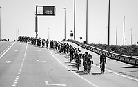 """Antwerp Port Epic 2018 (formerly """"Schaal Sels"""")<br /> One Day Race:  Antwerp > Antwerp (207 km; of which 32km are cobbles & 30km is gravel/off-road!)"""