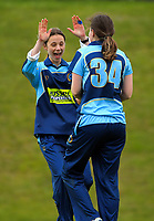 201205 Joy Lamason Trophy Cricket - Johnsonville v Wellington Collegians