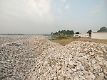 Oyster shell is piled outside a shucking house in Crisfield,MD.   The shell will be returned to the water as substrate to grow new oysters.