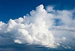 Deutschland, Bayern, Oberbayern, Chiemgau: Gewitterwolken bilden sich ueber den Bayerischen Alpen, Cumuluswolke | Germany, Bavaria, Upper Bavaria, Chiemgau: thundercloud  generating above the Bavarian Alps, cumulus cloud