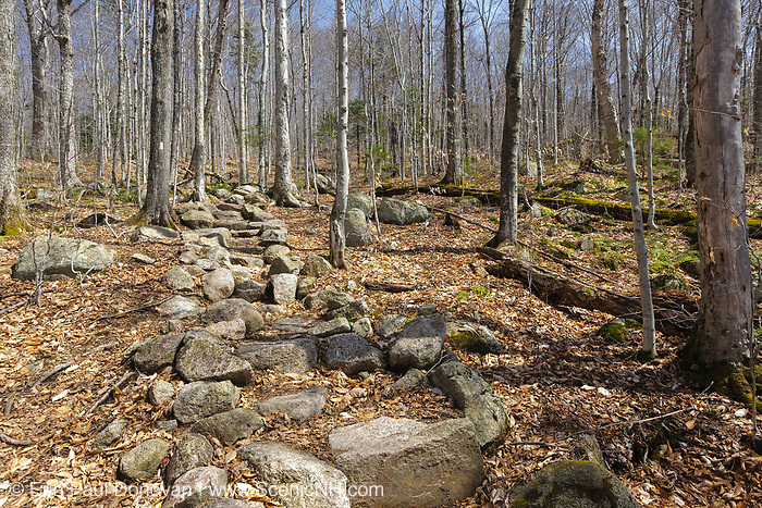 Rock steps along the Liberty Spring Trail in the White Mountains, New Hampshire. The Liberty Spring Trail is a segment of the Appalachian Trail.