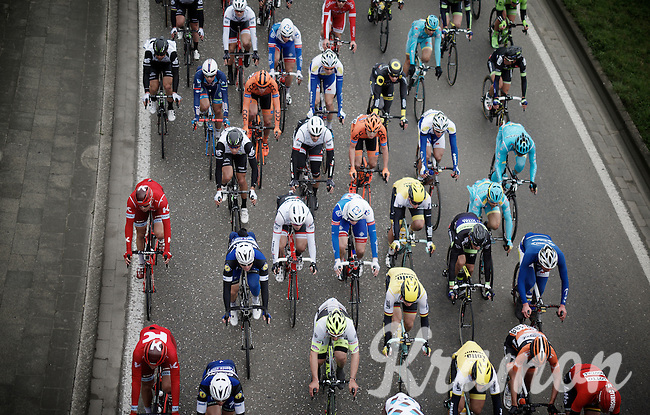 peloton from above<br /> <br /> 104th Scheldeprijs 2016