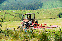 Mowing grass for silage. Hgher Fencewood Farm.
