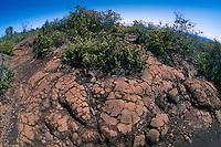 Lava Flows, Hawaii Volcanoes National Park, Big Island, Hawaii, US