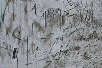 Julie Mehretu: Liminal Squared 5/11/13