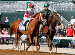 October 13, 2015:  Sapphire Kitten in the Jessamine Stakes at Keeneland on 10/07/15.  Candice Chavez/ESW/CSM