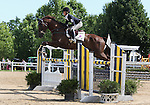 12 July 2009: Allison Springer riding Arthur during the showjumping phase of the CIC 3* Maui Jim Horse Trials at Lamplight Equestrian Center in Wayne, Illinois.