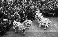 Milano, festeggiamenti per il Capodanno cinese in via Paolo Sarpi --- Milan, Chinese New Year celebrations in Paolo Sarpi street