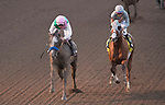 ARCADIA, CA - NOVEMBER 5: Arrogate #10, ridden by Mike Smith, wins the the Breeders' Cup Classic against California Chrome #4, ridden by Victor Espinoza, during day two of the 2016 Breeders' Cup World Championships at Santa Anita Park on November 5, 2016 in Arcadia, California. (Photo by Eric Patterson/Eclipse Sportswire/Breeders Cup)