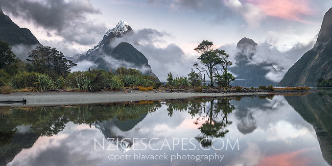 Dawn over Milford Sound with Mitre Peak and reflections, Fiordland National Park, Southland, UNESCO World Heritage Area, New Zealand, NZ