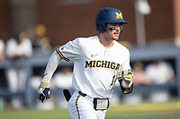 Michigan Wolverines third baseman Christian Molfetta (14) runs to first base against the Michigan State Spartans on March 22, 2021 in NCAA baseball action at Ray Fisher Stadium in Ann Arbor, Michigan. Michigan State beat the Wolverines 3-0. (Andrew Woolley/Four Seam Images)