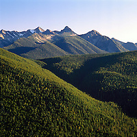 Manning Provincial Park, Southwestern BC, British Columbia, Canada - Coniferous Forest in North Cascade Mountains, Aerial View