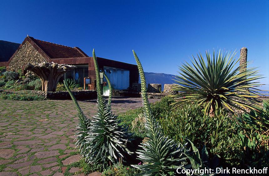 Spanien, Kanarische Inseln, El Hierro, Mirador de la Pena, erbaut von Cesar Manrique, Natternwurz