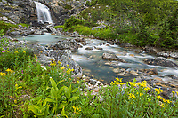 Mountain stream in White Pass Summit at the border between Alaska and British Columbia along the Klondike highway which leads to the historic gold rush town of Skagway, Alaska, on the Lynn Canal.