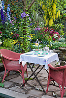 Eating outdoors with wicker chairs, tea set, lush garden, stone patio, coffee cups, luncheon outside on the stone patio with hanging Golden Chain Tree Laburnum in yellow gorgeous bloom, climbing clematis vines, delphinium flowers, achillea, rattan chairs for a colorful private beautiful garden setting, inspirational garden