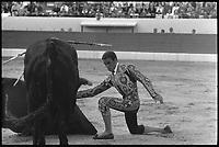 15 Septembre 1968. Vue de la corrida de Tinin dans les arènes de Toulouse.