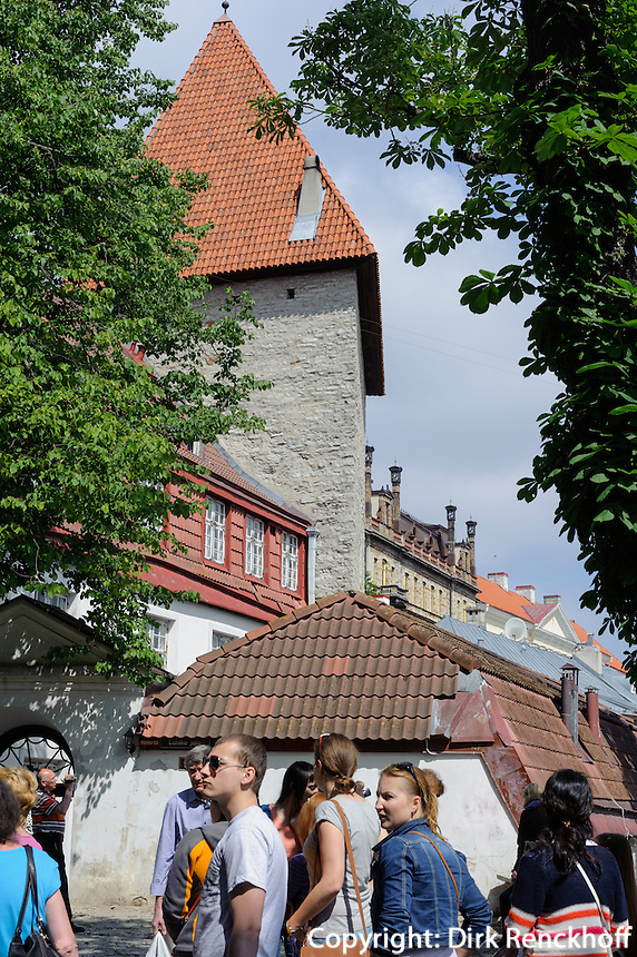 Stadtmauer in Tallinn (Reval), Estland, Europa, Unesco-Weltkulturerbe