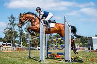 CLASS 26: Holbrook Farriery & Equestrian Horse 1.05m