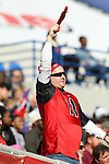 December 30, 2016: A Georgia Bulldog fan in the 1st half of the AutoZone Liberty Bowl with the Georgia Bulldogs vs TCU Horned Frogs at Liberty Bowl Memorial Stadium in Memphis, Tennessee. ©Justin Manning/Eclipse Sportswire/Cal Sport Media