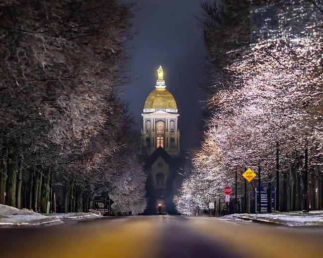 January 1, 2021; Freezing rain covers trees on Notre Dame Avenue (Photo by Matt Cashore/University of Notre Dame)