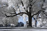 Historical Bracketts Farm located in Louisa, VA. Photo/Andrew Shurtleff