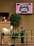September 10, 2014: Hip #450 JET SET  Tapit - Archduchess filly consigned by Dromoland Farm sold for $500,000 at the Keeneland September Yearling Sale.   Candice Chavez/ESW/CSM