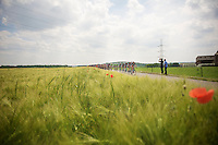 sunny day for a ride<br /> <br /> 2014 Belgium Tour<br /> (final) stage 5: Oreye - Oreye (179km)