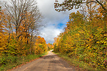 A forest road on a beautiful autumn day in northern Wisconsin.