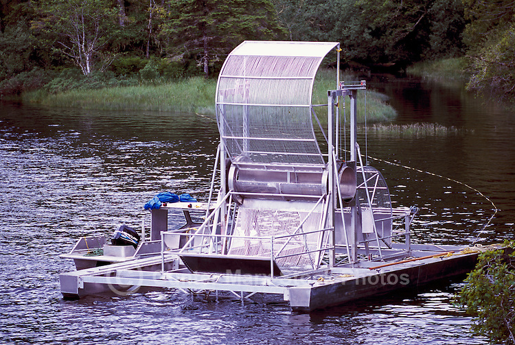 Fish Wheel Trap floating in the Nimpkish River near Port McNeill, Vancouver Island, BC, British Columbia, Canada - Fishwheel used for capturing and monitoring Downstream Migration of Juvenile Salmonids or Smolts, or for catching Returning Salmon migrating Upstream