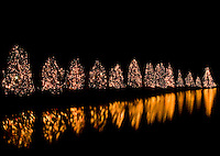 Christmas lights glow and reflect off the lake in the town of McAdenville, NC. The town of McAdenville has been celebrating Christmas by decorating the homes in town with red, green and white lights and has come to be known as Christmas Town USA.