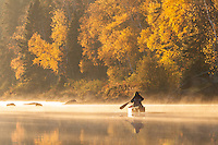 """""""Autumn Morning Paddle""""<br /> <br /> A canoeist enjoys paddling through the tranquility of autumn morning gold."""