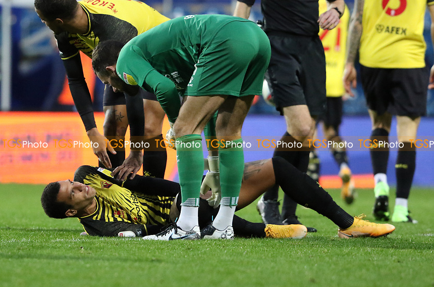 Etienne Capoue of Watford goes down injured during Queens Park Rangers vs Watford, Sky Bet EFL Championship Football at The Kiyan Prince Foundation Stadium on 21st November 2020