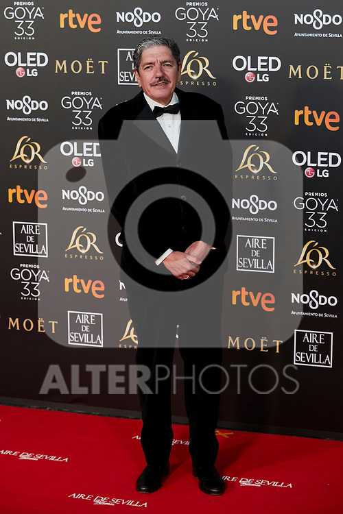 Antonio Dechent attends to 33rd Goya Awards at Fibes - Conference and Exhibition  in Seville, Spain. February 02, 2019. (ALTERPHOTOS/A. Perez Meca)