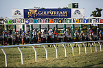 HALLANDALE FL - FEBRUARY 27: A field of horses breaks from the starting gate on the turf course at Gulfstream Park on February 27, 2016 in Hallandale, Florida.(Photo by Alex Evers/Eclipse Sportswire/Getty Images)