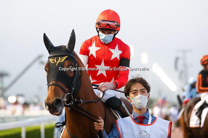 March 27, 2021: RED LE ZELE (JPN), #10 in the post parade for the Golden Shaheen on Dubai World Cup Day, Meydan Racecourse, Dubai, UAE. Shamela Hanley/Eclipse Sportswire/CSM
