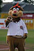 July 17, 2003:  Mascot Maxwell T. Chomper of the Batavia Muckdogs during a game at Dwyer Stadium in Batavia, New York.  Photo by:  Mike Janes/Four Seam Images